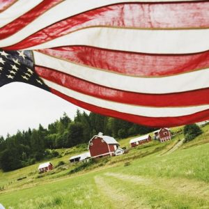12 Memorial Day Ideas to Enjoy With the Entire Family